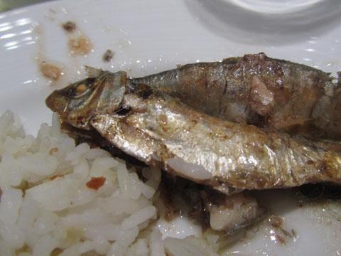 sardines-tawilis