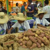 Honoring women farmers at the Women's Market with Oxfam Philippines @oxfaminPHL