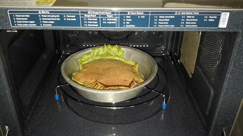 from a samsung oven